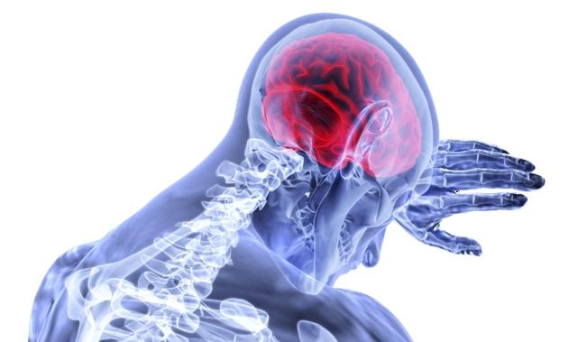 新冠感染是如何损伤大脑的